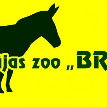 Piemājas zoo - BRIEŽI