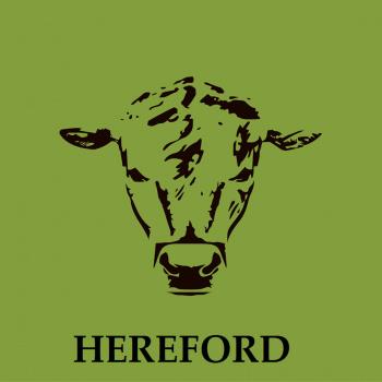 Bioloģiski audzēta Hereford liellopu gaļa