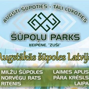 Ķeipenes šūpoļu parks